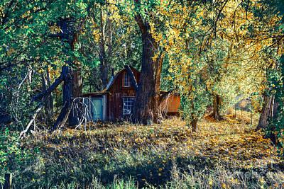 Fall Photograph - Hidden Country Barn by Mark Smith