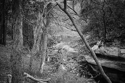 Photograph - Hidden Creek by Jeff Mize