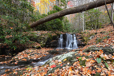 Photograph - Hidden Falls by Alan Lenk