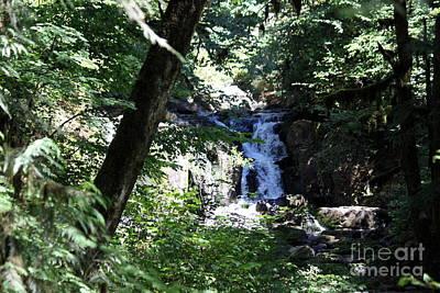 Photograph - Hidden Falls by Erica Hanel