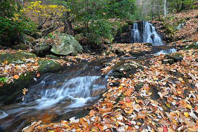 Photograph - Hidden Falls Flows by Alan Lenk