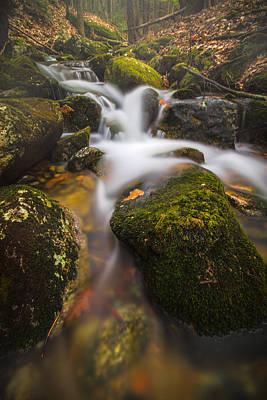 Photograph - Hidden Falls by Robert Clifford