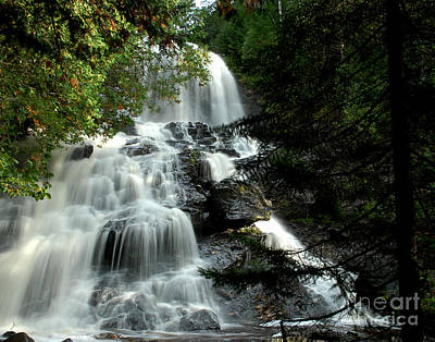 Photograph - Hidden Falls by Tammy Collins