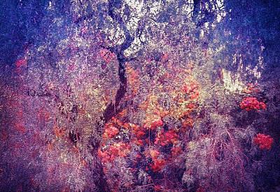 Impressionism Photos - Hidden Garden of Desire by Jenny Rainbow