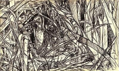 Drawing - Hidden by Kendall Kessler