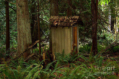 Photograph - Hidden Outhouse by Deanna Proffitt