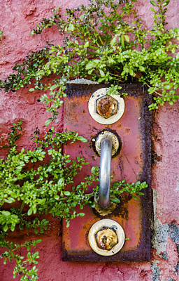 Photograph - Hidden Red Door To Nowhere by Carolyn Marshall