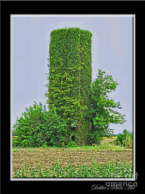 Photograph - Hidden Silo by Debbie Portwood