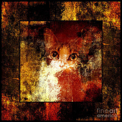 Andee Design Puss Photograph - Hidden Square by Andee Design