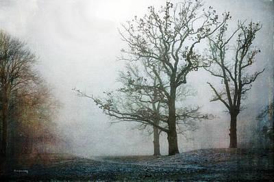 Photograph - Hidden Territory by Randi Grace Nilsberg