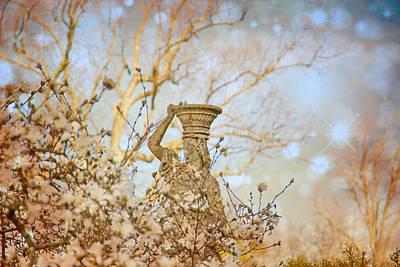 Photograph - Hidden Treasure by Pamela Parton