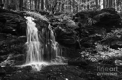 Photograph - Hidden Waterfall by Debra Fedchin