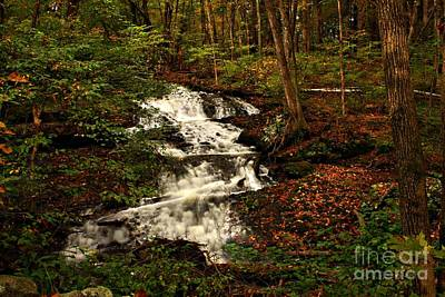 Photograph - Hidden Waterfall by Marcia Lee Jones