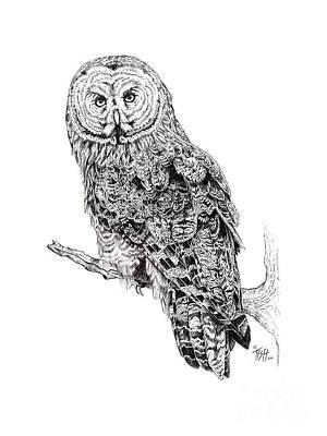 Hidden Wisdom Art Print