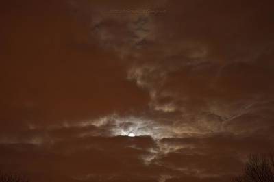 Under The Moon Wall Art - Photograph - Hide And Seek by Sonali Gangane