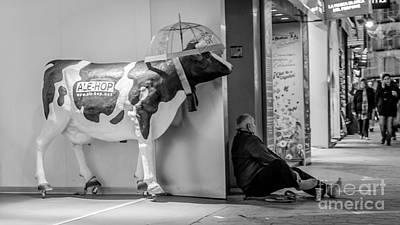 Photograph - Hide by Eugenio Moya