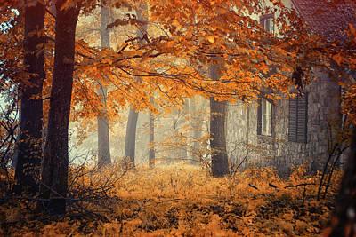 Mist Photograph - Hideaway by Ildiko Neer