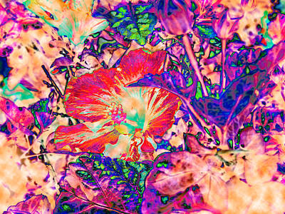 Hiding Hibiscus Art Print