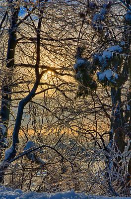Ringo Photograph - Hiding Sun by Ryan Crane
