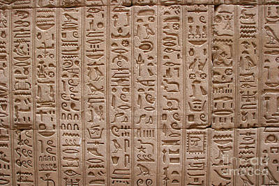 Hieroglyphs At The Temple Of Philae Art Print by Stephen & Donna O'Meara