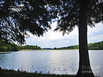 Higgins Lake In The Summer Art Print by Nancy E Stein