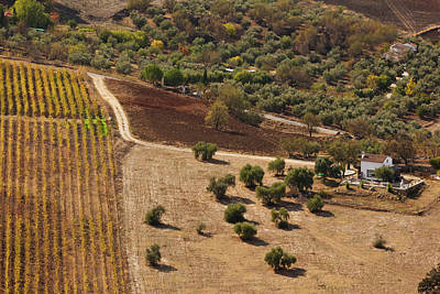 Ronda Photograph - High Angle View Of A Field, Ronda by Panoramic Images