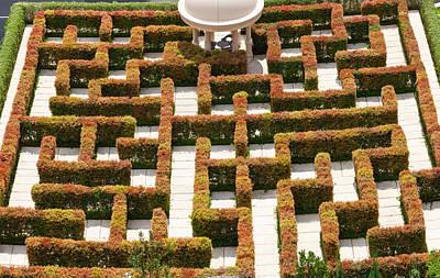 High Angle View Of Maze At Ritz-carlton Art Print