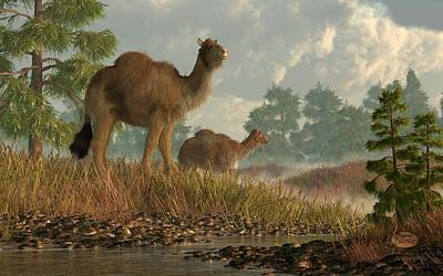 Fossil Reconstruction Digital Art - High Arctic Camel by Daniel Eskridge