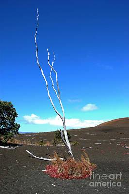 High Atop Maunakea On Hawaii Art Print by Micah May