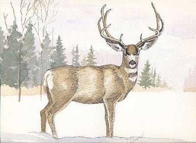 Painting - High Country Mule Deer by Dale Jackson