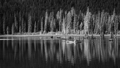 Photograph - High Country Tranquility by Angie Vogel
