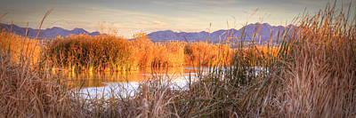 Photograph - High Desert Wetlands by Robert Melvin