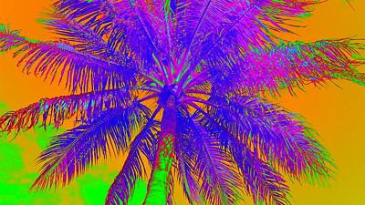 Photograph - High Fever Palm by Florene Welebny