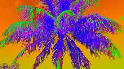 Photograph - High Fever Palm II by Florene Welebny
