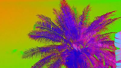 Photograph - High Fever Palm IIi by Florene Welebny
