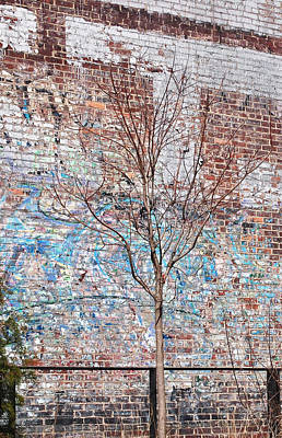 Graffiti Photograph - High Line Palimpsest by Rona Black