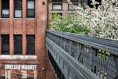 High Line Park Art Print by JC Findley