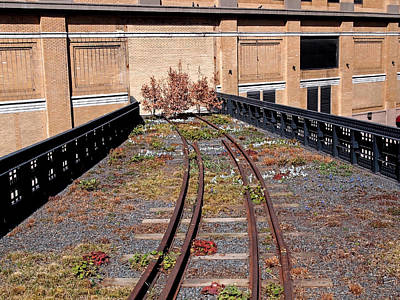 Photograph - High Line Spur by Rona Black