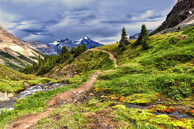 Photograph - High Mountain Trail by Kathleen Bishop