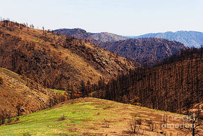 High Park Fire Burn Original by Jon Burch Photography
