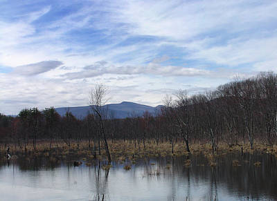 Photograph - High Peak Waiting Spring by Terrance DePietro