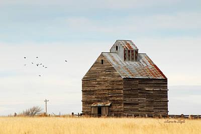 Metal Roof Photograph - High Plains Autumn by Karen Slagle