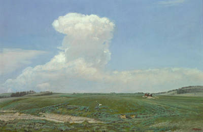 High Plains Big Sky Art Print by Terry Guyer