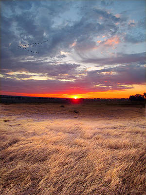 High Plains Sunrise Art Print by Ric Soulen
