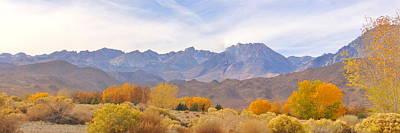 Photograph - High Sierra Autumn by Marilyn Diaz