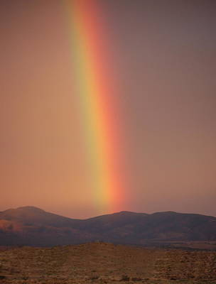 Photograph - High Sierra Desert Rainbow by Tamyra Crossley