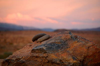 Photograph - High Sierra Desert by Tamyra Crossley