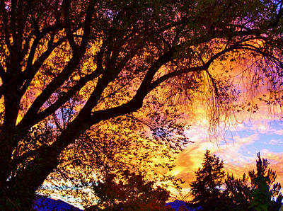Photograph - High Sierra Sunset by Marilyn Diaz