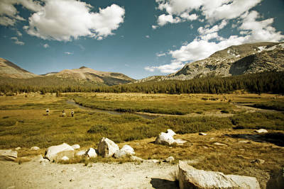Photograph - High Sierras Meadow by Bonnie Bruno