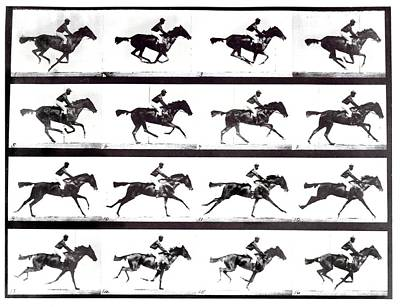 High-speed Sequence Of A Galloping Horse And Rider Art Print by Eadweard Muybridge Collection/ Kingston Museum/science Photo Library